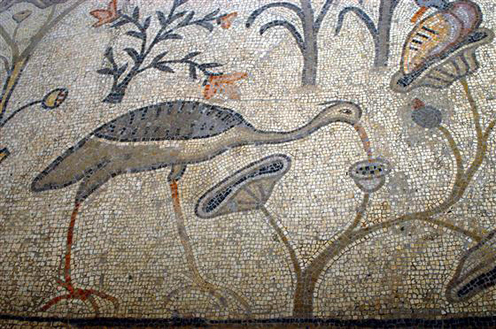 mosaic at Tabgha, photo courtesy of IMOT