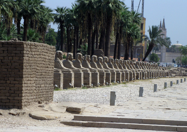 avenue of sphinxes, Luxor Temple, Egypt