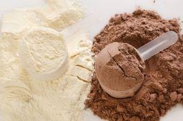 Whey en poudre ou lactosérum du lait