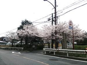 南郷霊園 国道入口