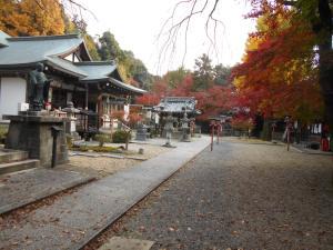 本堂前の参道