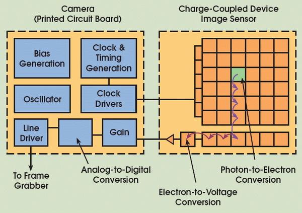 Perbedaan Antara Sensor Gambar CCD dan CMOS di Kamera Digital 5