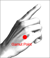EFT gamut 9 procedure by tapping this point