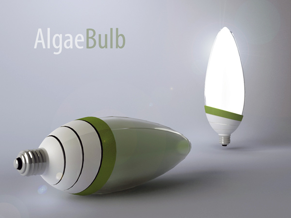 Image result for algae lights