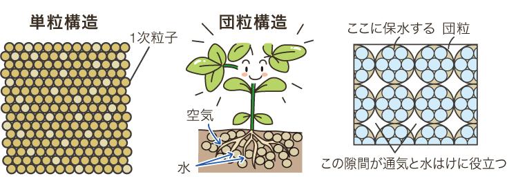 土のt単粒構造・団粒構造