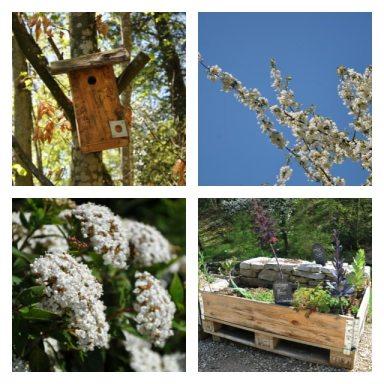 Jardin botanique 1coll_mini