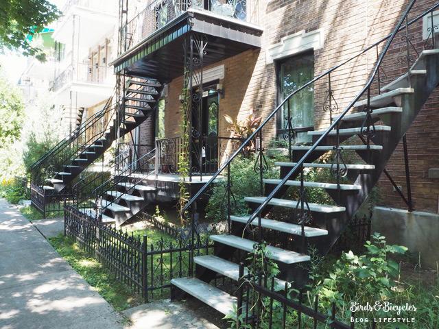 Maisons à escaliers Montréal