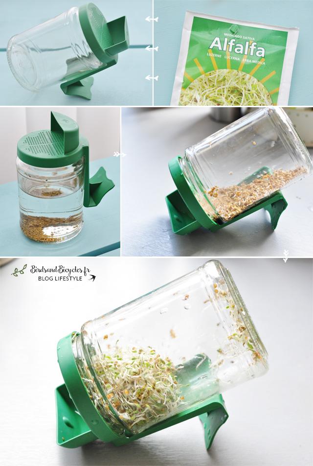 mon kit pour faire pousser des graines germ es la maison. Black Bedroom Furniture Sets. Home Design Ideas
