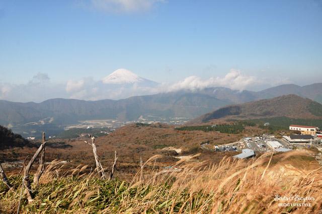 Balade dans la montagne à Hakone
