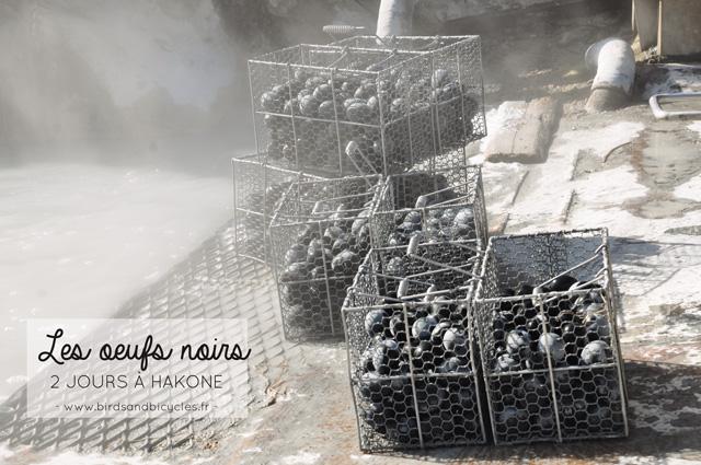 Les oeufs noir à Hakone, à goûter à Owakudani dans les montagnes japonaises