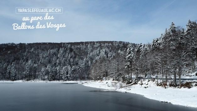 Un lac gelé dans les Vosges
