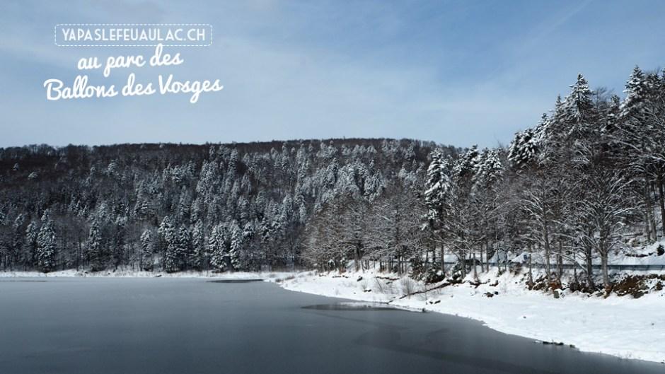 Un lac gelé au Parc des Ballons des Vosges