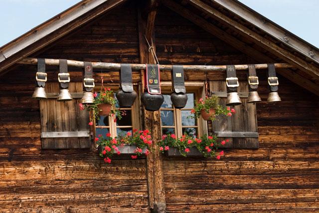 L'invasion des géraniums en Suisse