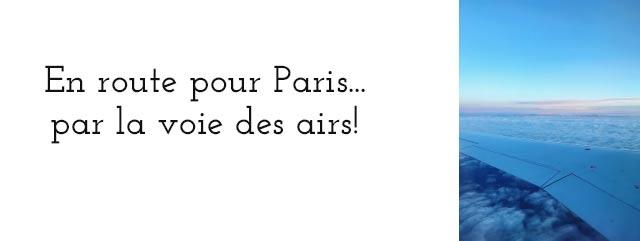 Aller à Paris un jour de grève SNCF - je vous raconte mon exploit!