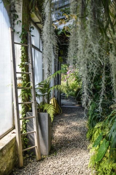 jardin-botanique-tessin-ile-brissago-11