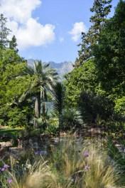 jardin-botanique-tessin-ile-brissago-15