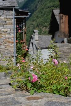 visite-val-verzasca-village-Sonogno (4)