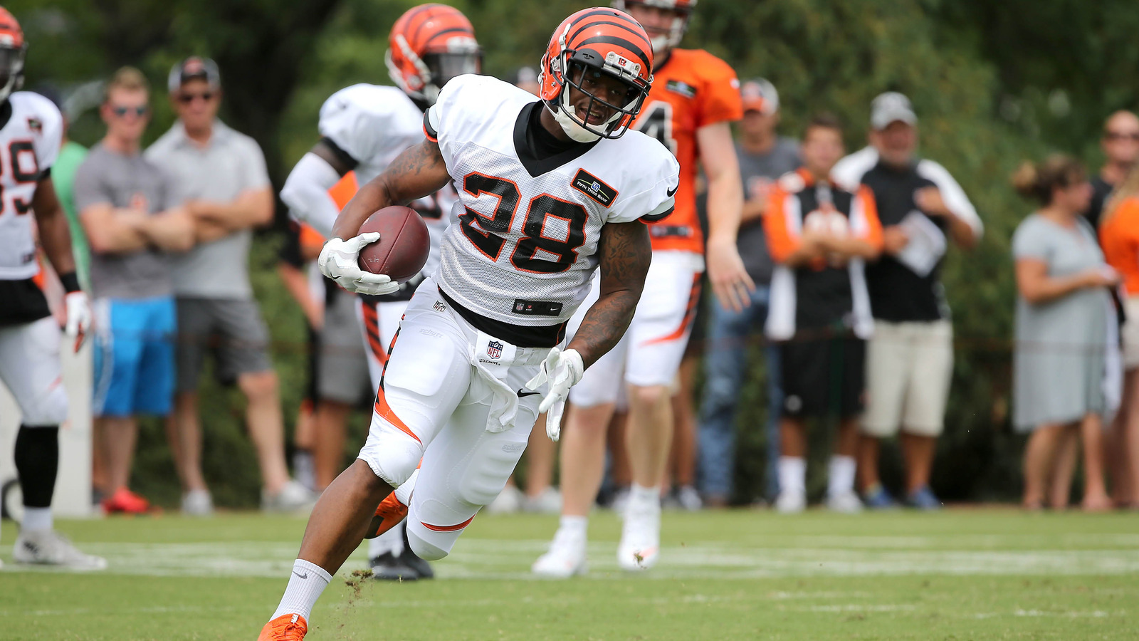 Image result for bengals 2017 training camp running backs