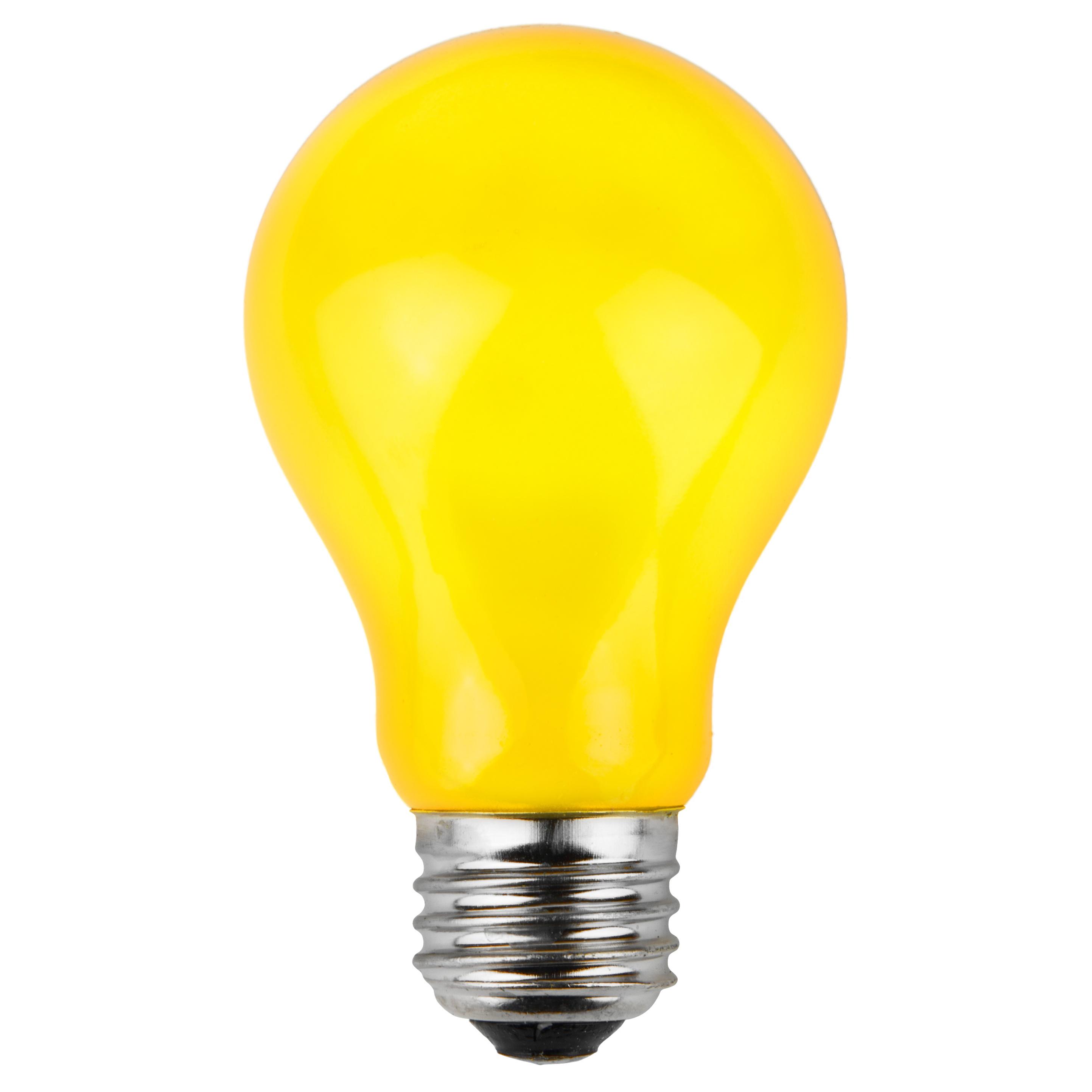 Battery Operated Light Bulb Socket