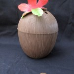 Coconut Cup - Significant Objects
