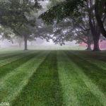 Lawn Care Roxbury CT