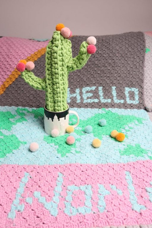 Häkel Kaktus mit Pompons