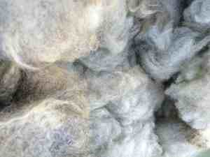 Stacy's Merino cross fleece
