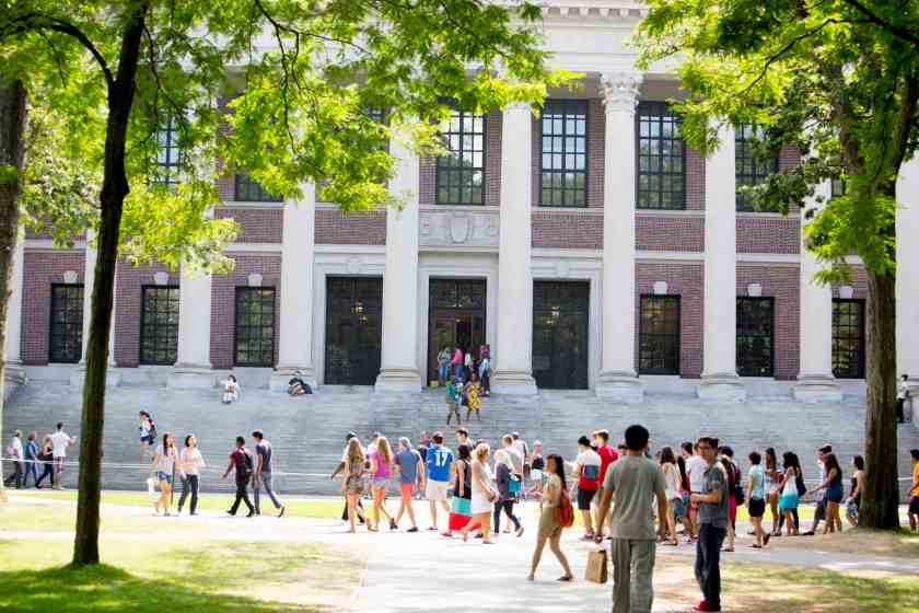 The steps of Widener Library at Harvard University. Rose Lincoln/Harvard Staff Photographer.  Photo courtesy of Harvard Public Affairs & Communications.