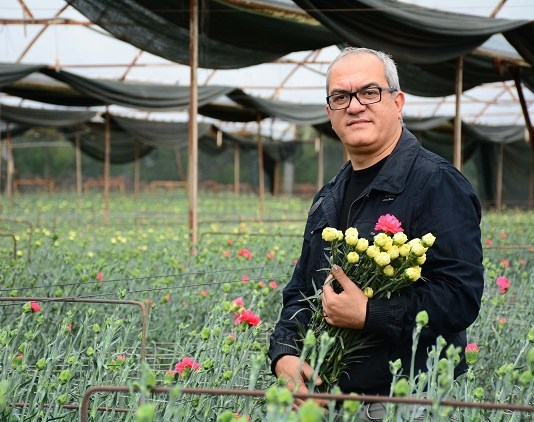 Osman Bagdatlioglu