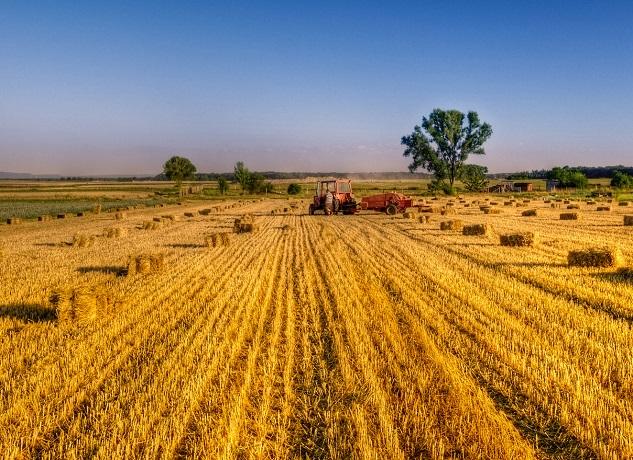 Tarım- ÜFE Ekim ayında %0,88 arttı - Tarım - Yaşam için Gıda
