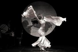 Belly Dancer Moon Background