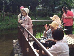 20150821日本で最初の団地「ひばりヶ丘団地」5
