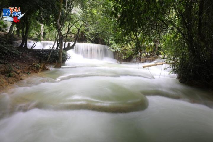 龍坡邦最熱門景點-關西瀑布Kuang Si waterfall @YA 野旅行-陪伴您遨遊四海