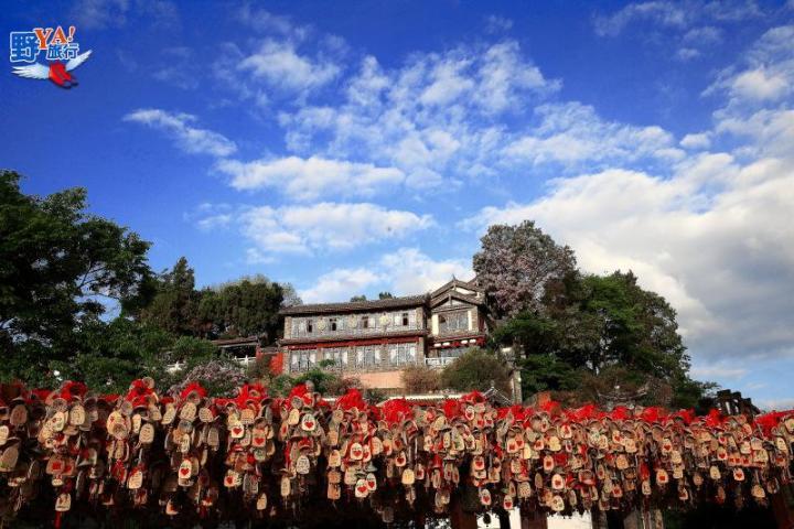 雲南麗江大研古城 @YA !野旅行-玩樂全世界