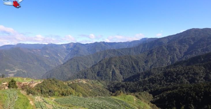 觀霧不止是觀霧,北台灣最佳週休旅遊路線 @YA !野旅行-玩樂全世界