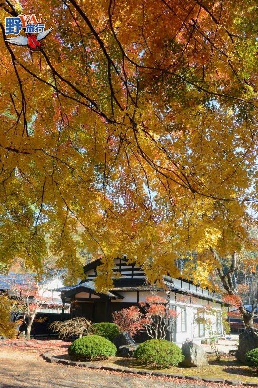 秋日奧州小京都 夢幻東北色彩繽紛 @YA !野旅行-吃喝玩樂全都錄