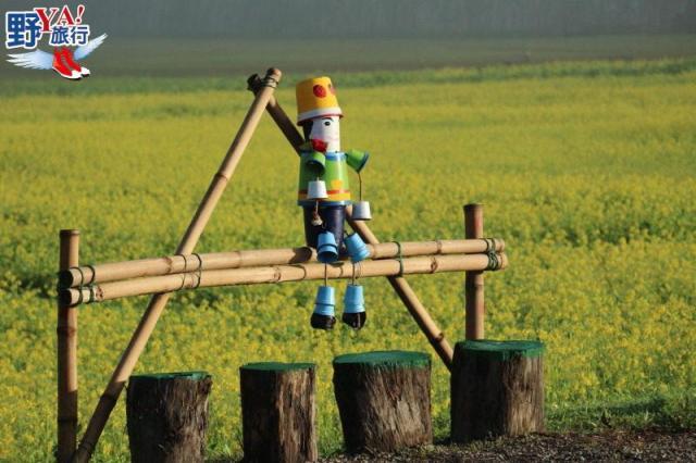 大農大富平地森林花海迎賓,新春納福旺旺來! @YA !野旅行-吃喝玩樂全都錄