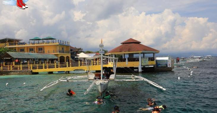 菲律賓宿霧潛水初體驗 令人震撼的莫亞礁沙丁魚風暴 @YA 野旅行-陪伴您遨遊四海