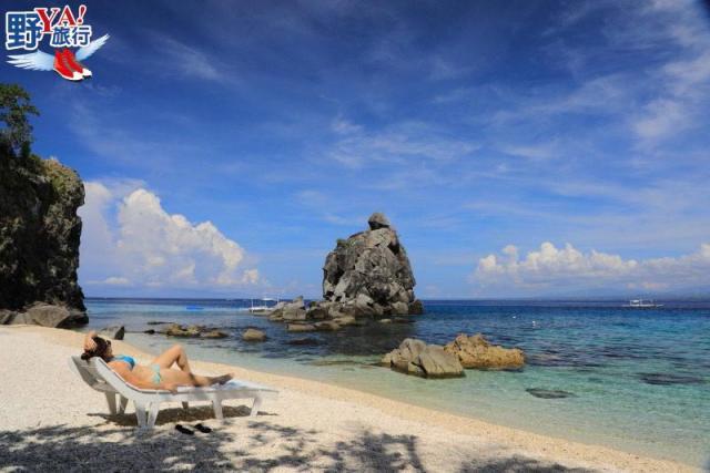體驗潛水與海龜同游 菲律賓阿波島超BLUE @YA !野旅行-吃喝玩樂全都錄