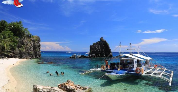 體驗潛水與海龜同游 菲律賓阿波島超BLUE @YA 野旅行-陪伴您遨遊四海