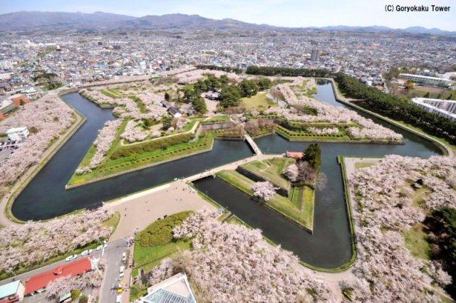 日本|函館 冬遊北海道魅力函館 美食美景一次打包 @YA !野旅行-吃喝玩樂全都錄