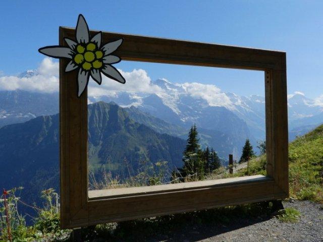 2019年瑞士旅遊新鮮事 找尋阿爾卑斯山的極致魅力 @YA 野旅行-陪伴您遨遊四海
