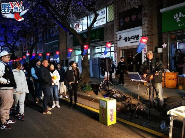 韓國濟州島 典農路浪漫櫻花大道 逛街購物大啖夜市美食 @YA 野旅行-陪伴您遨遊四海