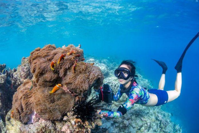 馬爾地夫伊瑚魯悅椿度假村潛水拍沈船 @YA !野旅行-吃喝玩樂全都錄