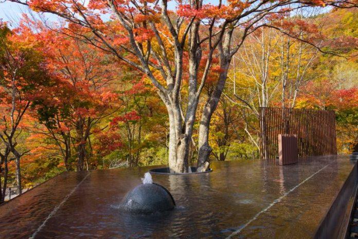 日本東北賞楓熱門極景 奧入瀨溪流之秋 @YA !野旅行-吃喝玩樂全都錄