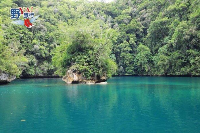 超好玩的水上活動!帛琉水母湖、牛奶湖一日遊 @YA !野旅行-吃喝玩樂全都錄