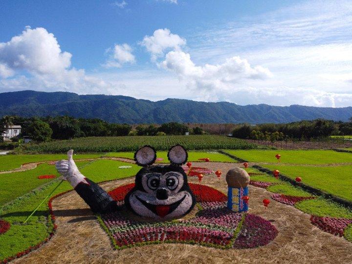 元宵假期花蓮走春趣 賞太平洋燈會逛花海 @YA !野旅行-玩樂全世界