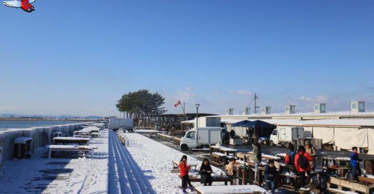 日本東北閖上朝市爐端燒 太平洋現撈海鮮燒烤太銷魂 @YA 野旅行-陪伴您遨遊四海