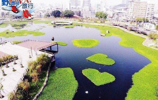 會呼吸的星泉湖雙心水草 台中新景點帝國糖廠湖濱公園 @YA !野旅行-玩樂全世界
