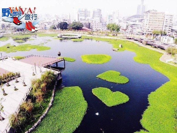 會呼吸的星泉湖雙心水草 台中新景點帝國糖廠湖濱公園 @YA !野旅行-吃喝玩樂全都錄